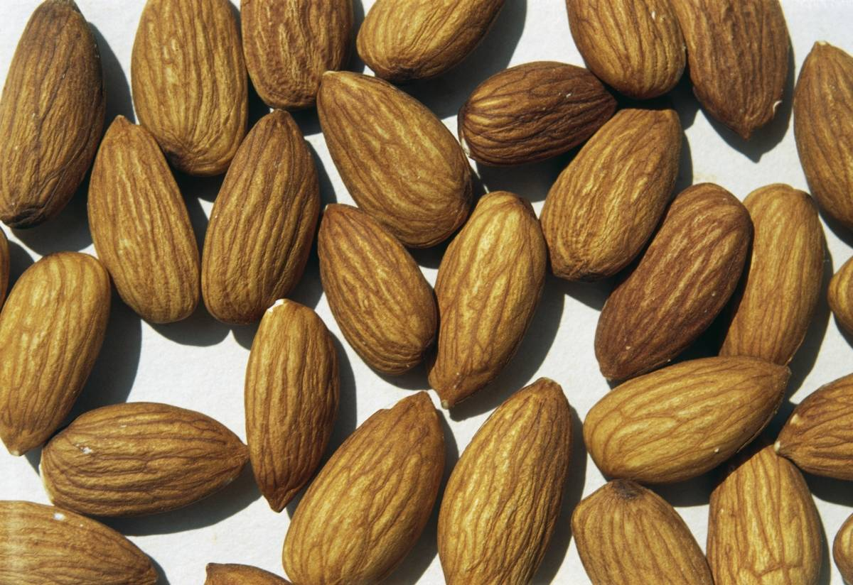 Almonds, edible seeds of almond, Rosaceae