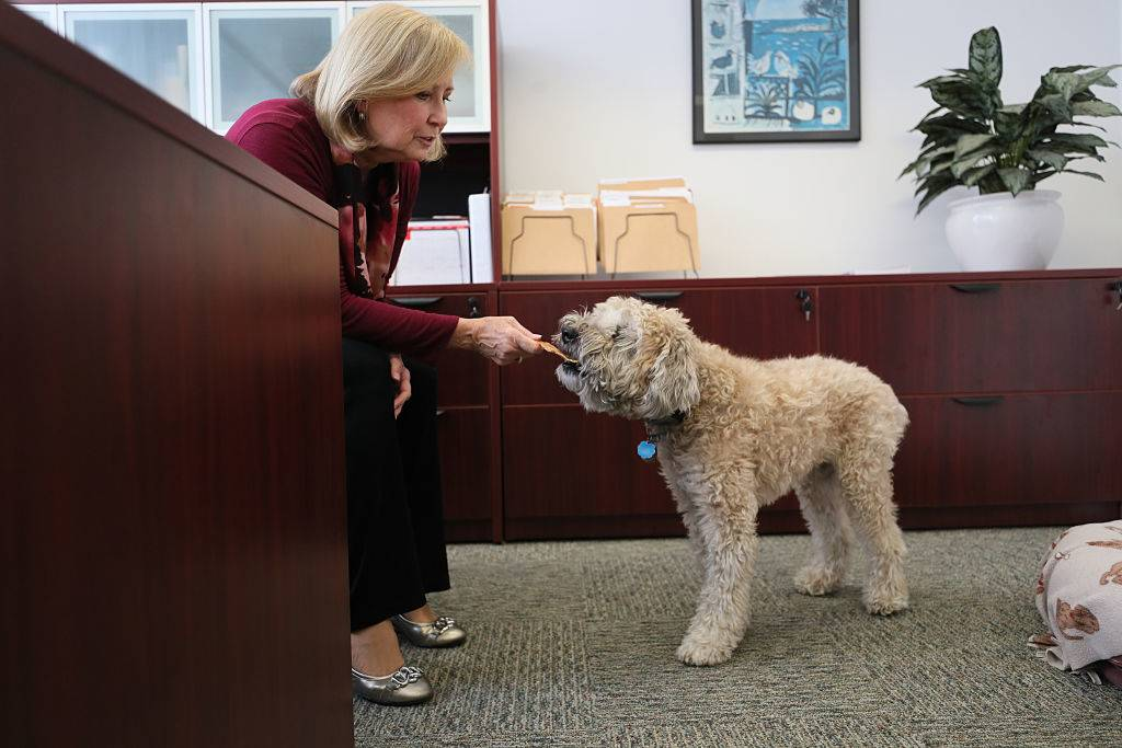 Mary Nee feeding her dog a treat