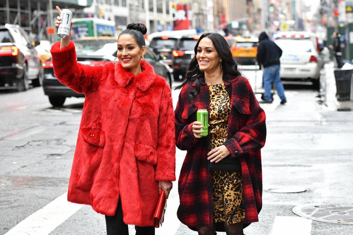 Nikki Bella And Brie Bella Announce Partnership With Monster Energy