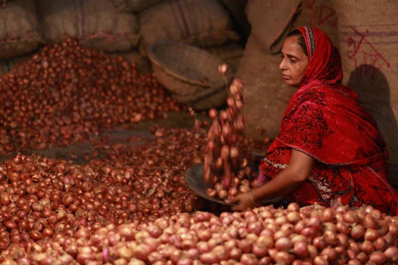 A woman sorts onions for sale in a large pile of onions.