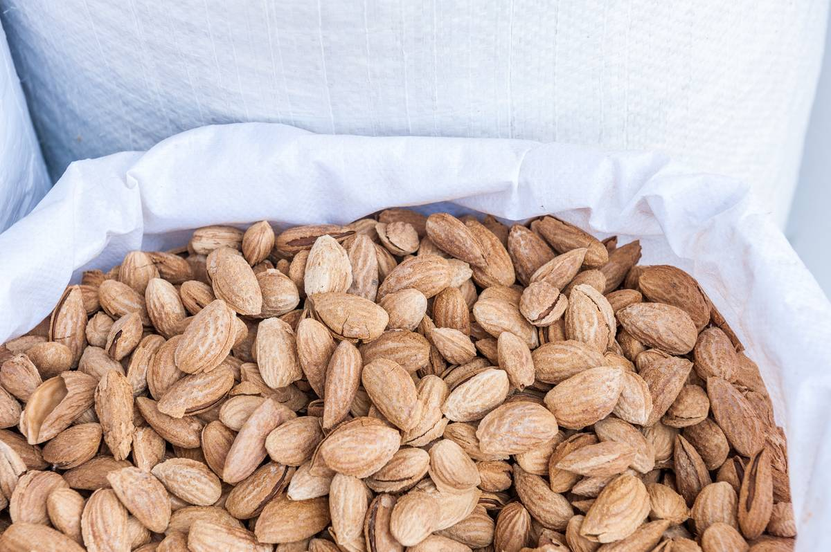 Almonds are carried in a white cloth.