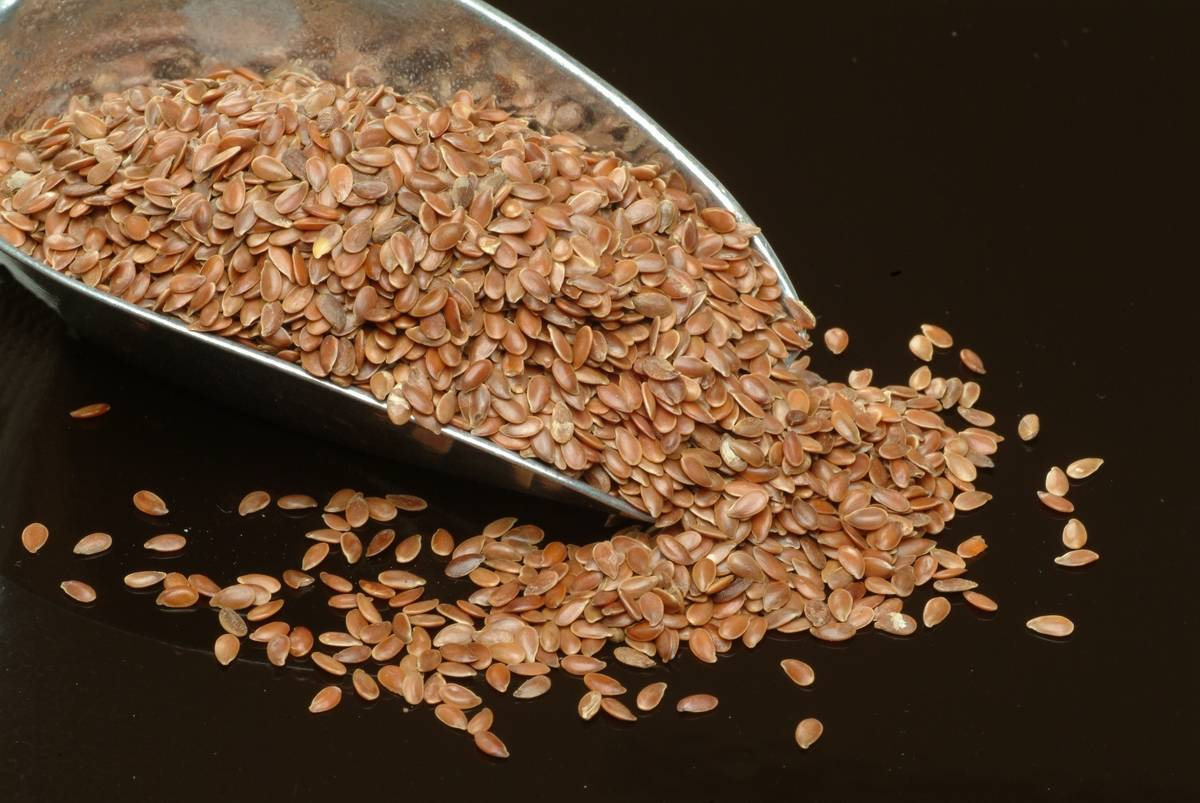 Flaxseeds pour off of a metal scoop.