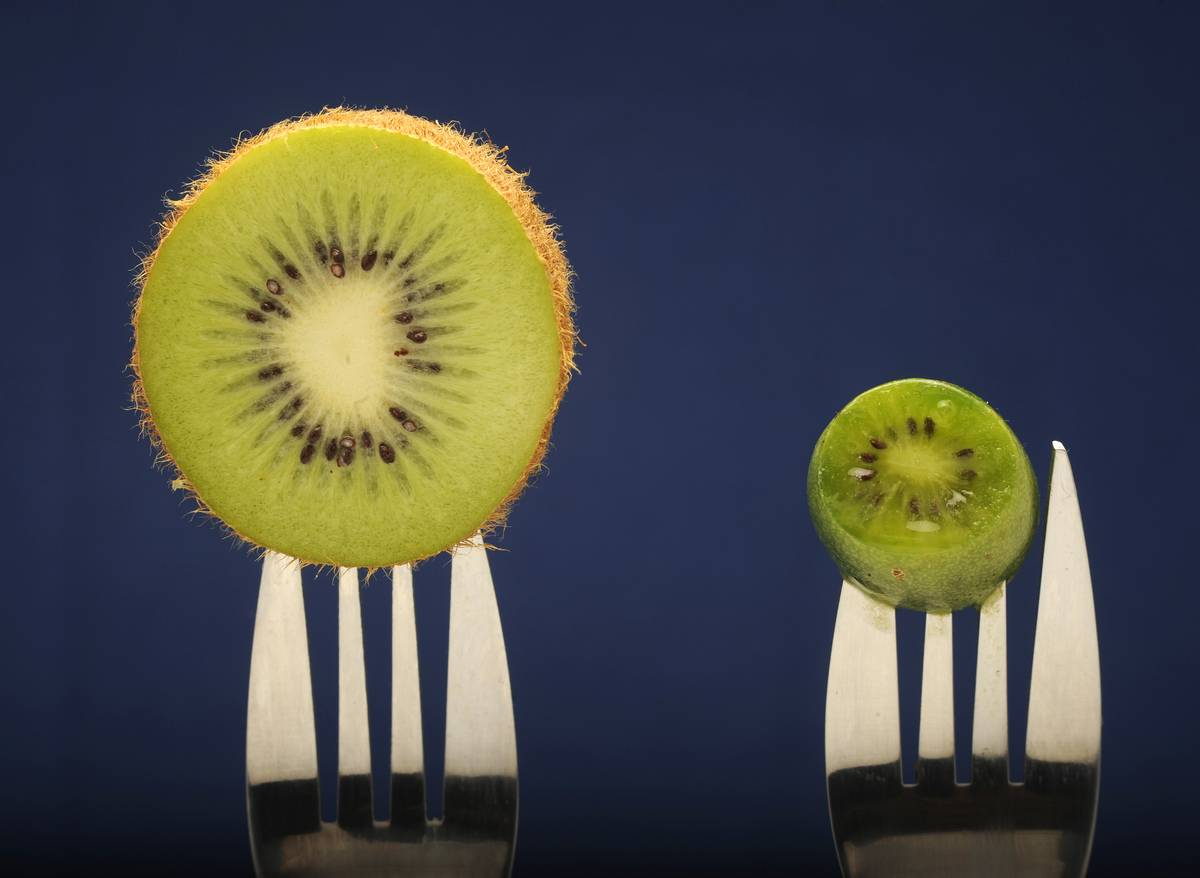 Kiwi halves are on forks against a blue background.