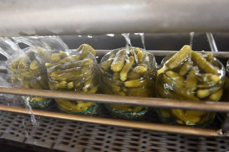 Pickle jars receive a hot vinegar bath in a factory.
