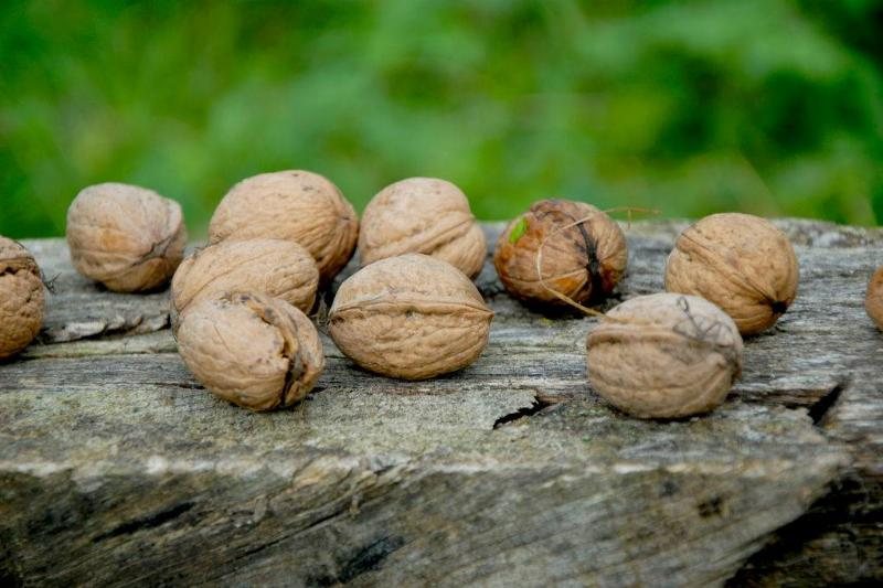 Walnuts are seen against a wooden surface