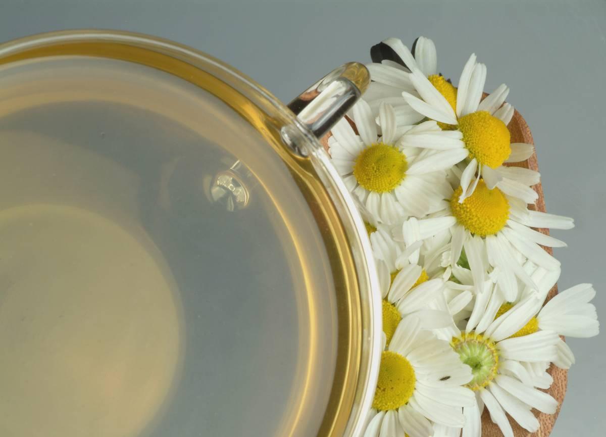 A glass mug holds chamomile tea next to the herb's flowers.