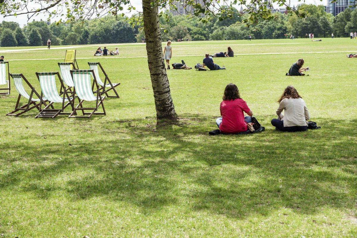 Two women sit underneath the shade of a tree in Hyde Park, London.