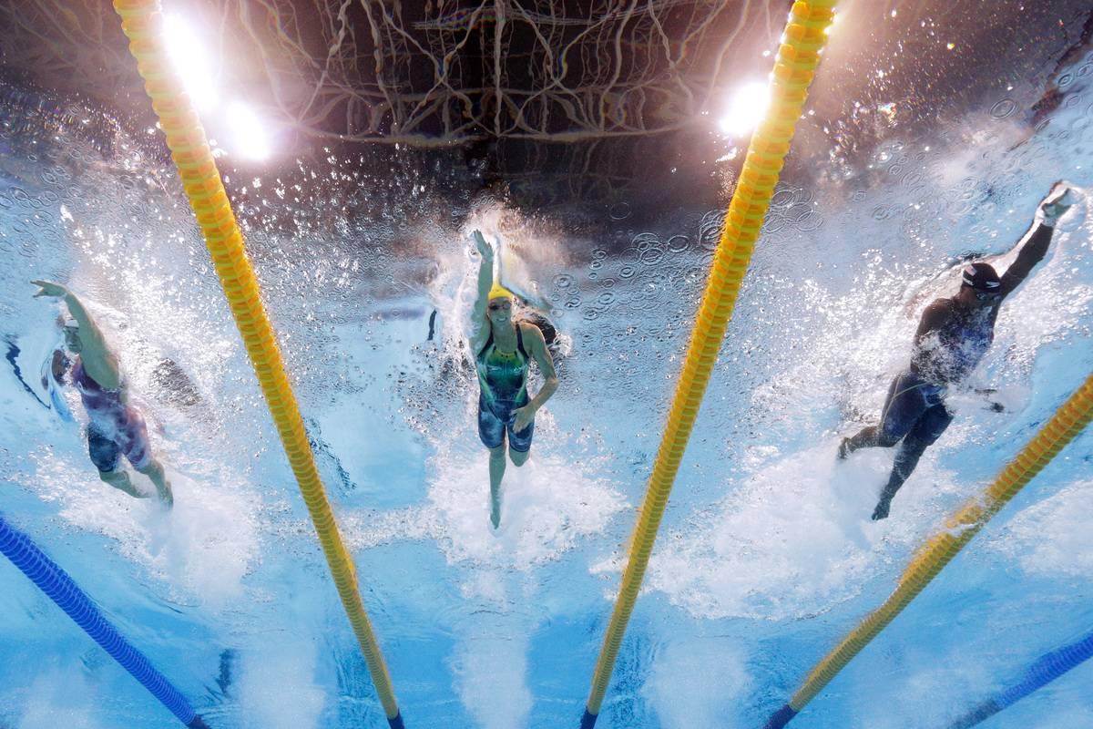 Three people swim in three pool lanes.