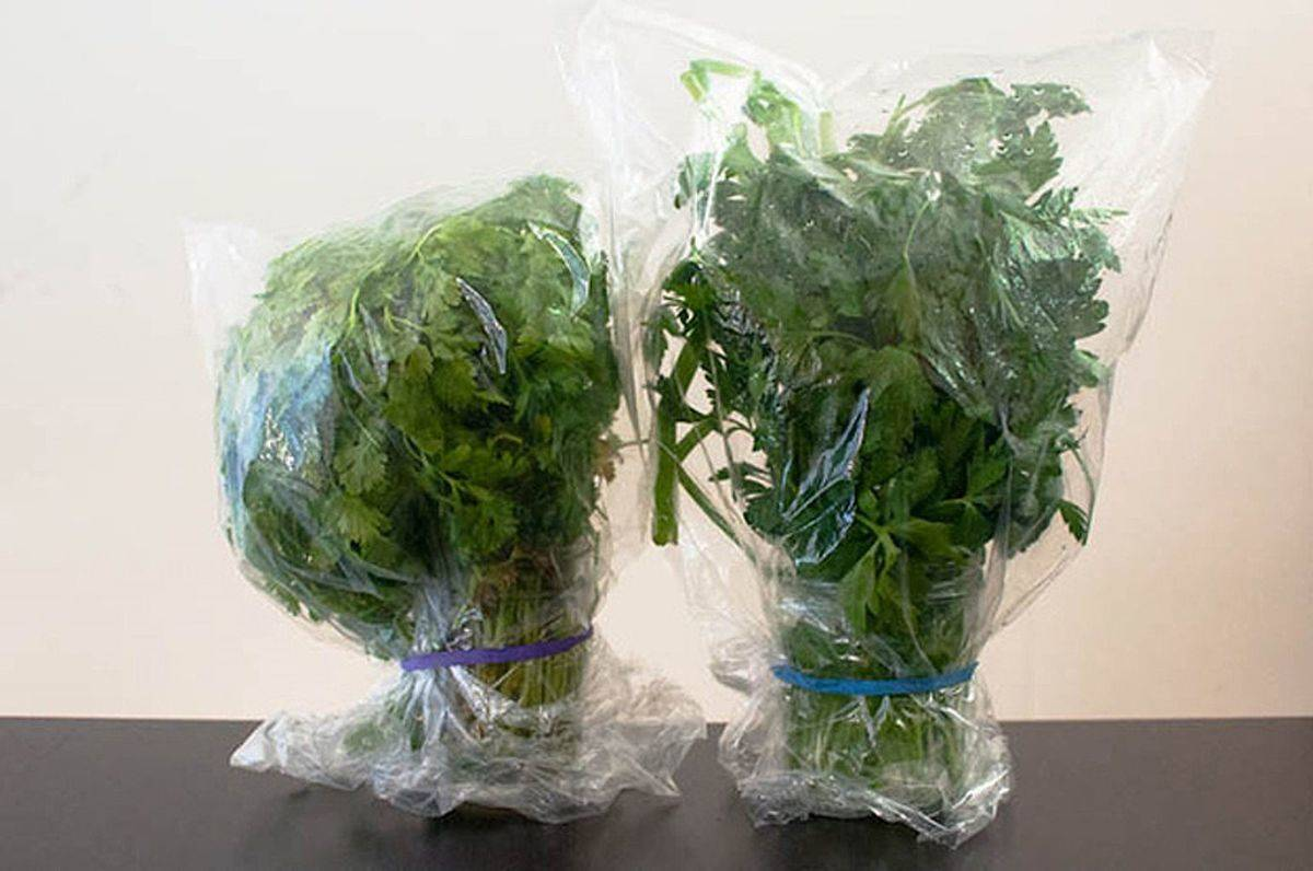 Freshly-grown herbs are covered with plastic wrap.