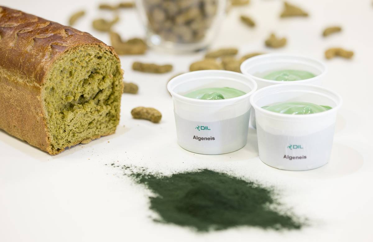 Bread and ice cream are made from powdered algae, pictured in the lower right.