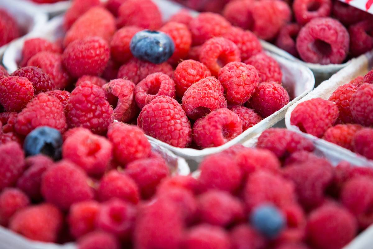 A few blueberries are seen on containers of raspberries.