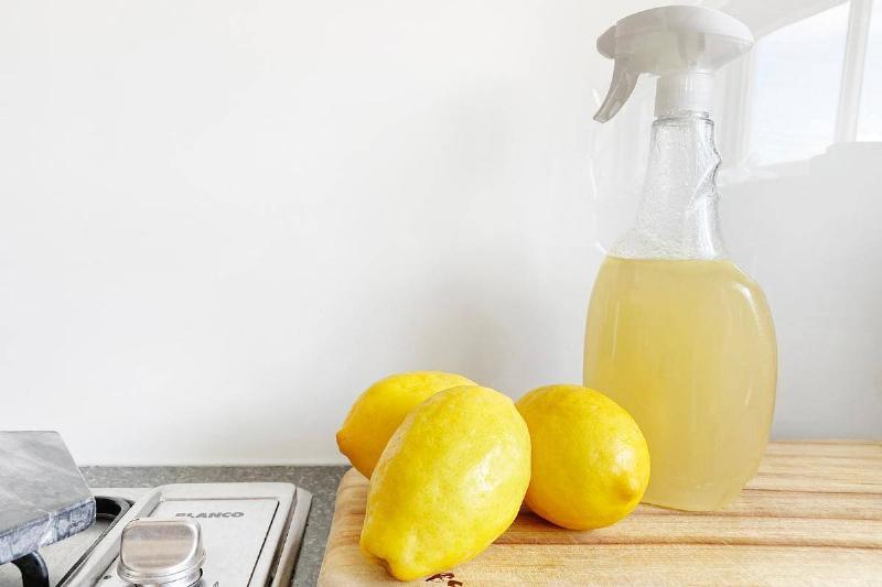 vinegar-spray