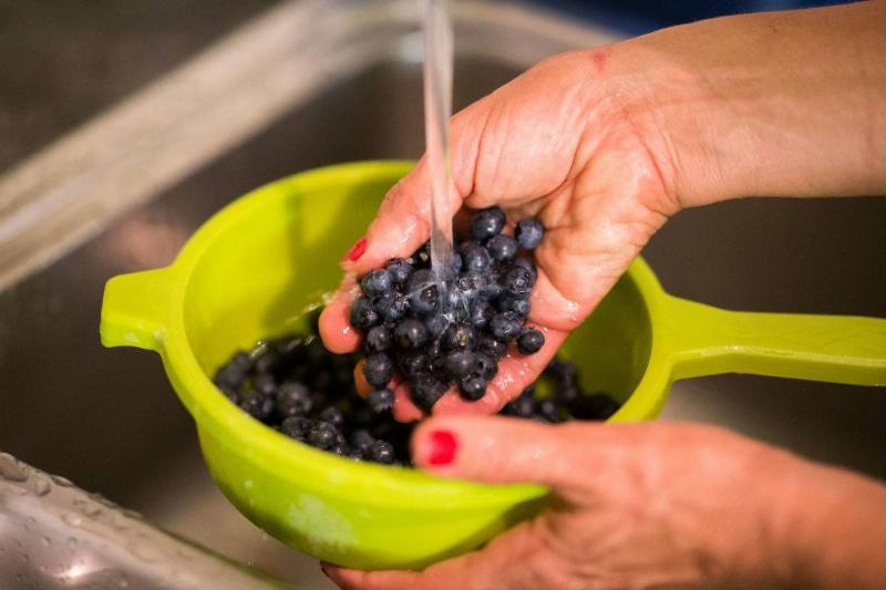 washing-blueberries