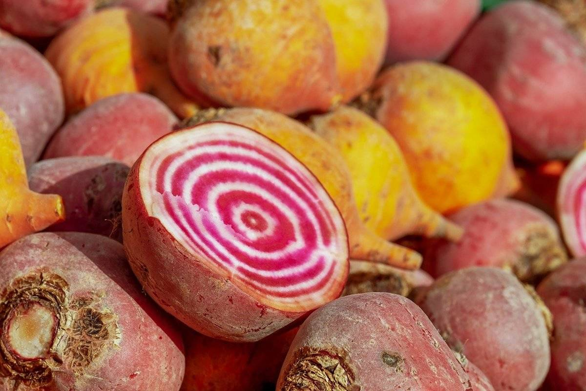 A cut beetroot lies on top of a pile of whole beets.