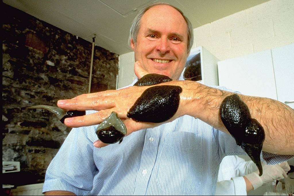 a man with leeches all over his hand and arm
