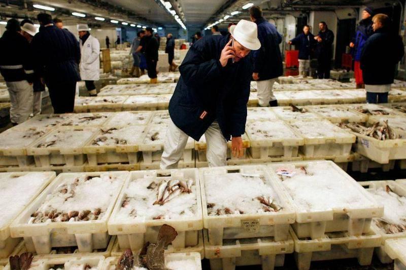 seafood-market-73237927-18249