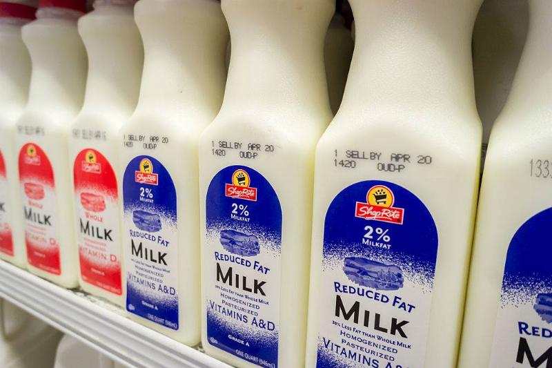 Containers of reduced fat and whole milk in a supermarket refrigerator