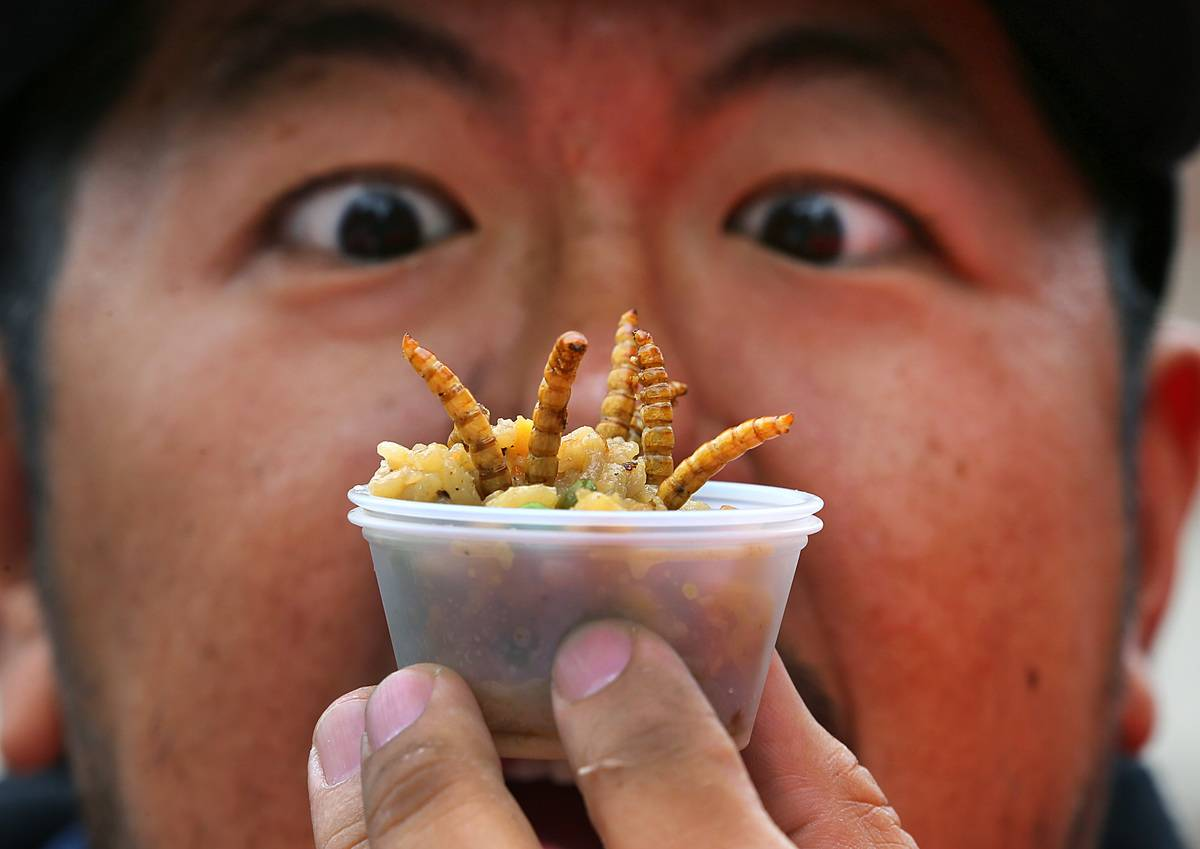 A man holds up a cup of dried insects to eat.