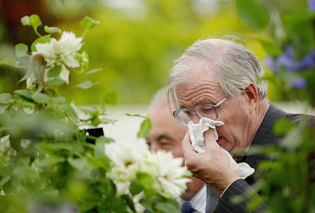 an old man sneezing outside by some flowers