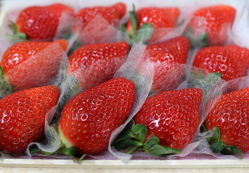 strawberries on individual lining sheets