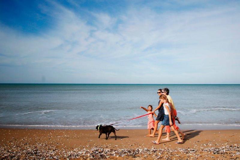 A family and their dog walk along the beach on a sunny autumn day