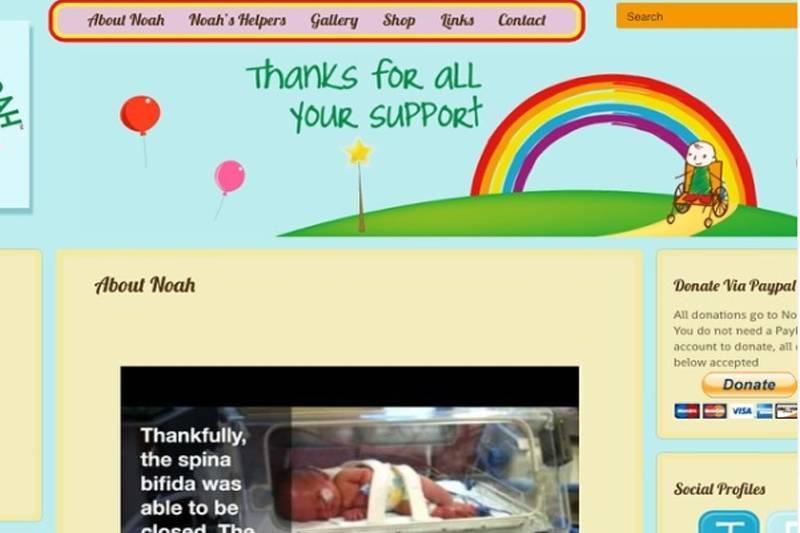 a screenshot of the hugs for noah website